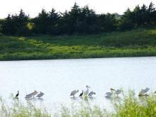 wildlife-refuge